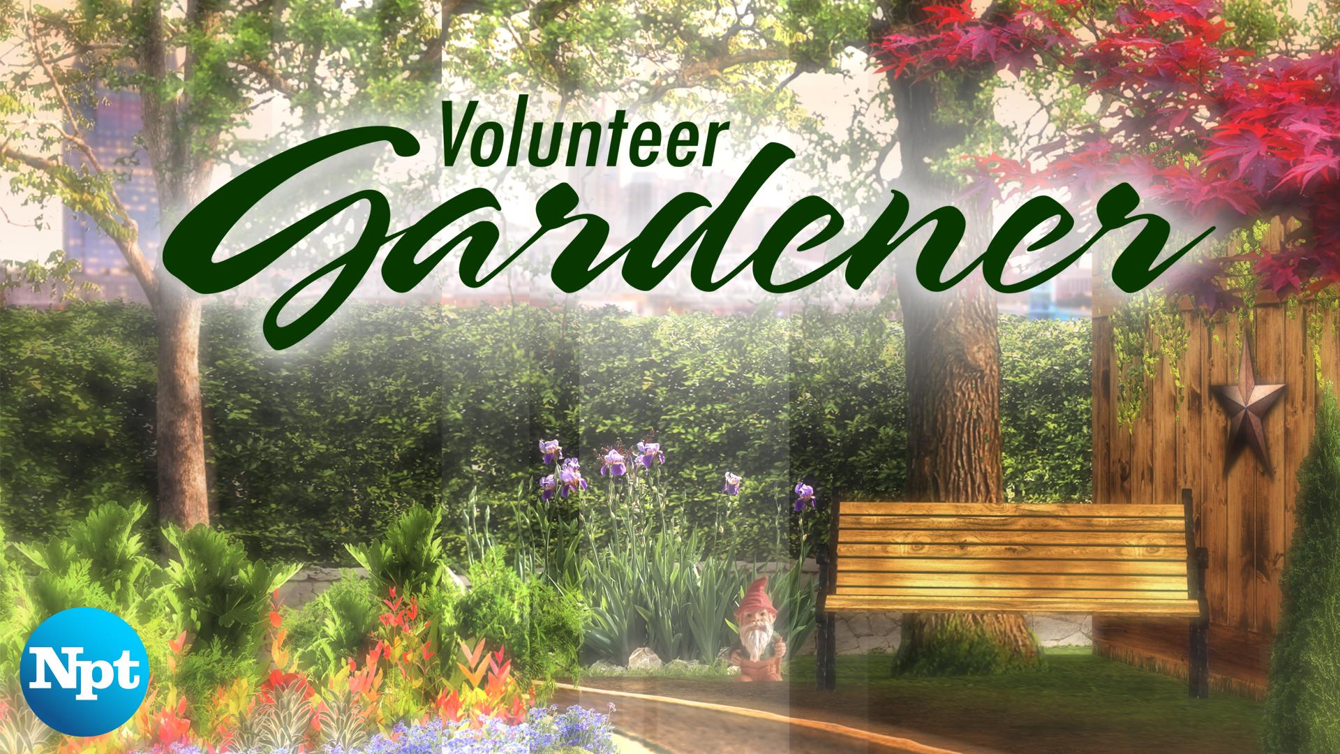 Volunteer Gardener NPT
