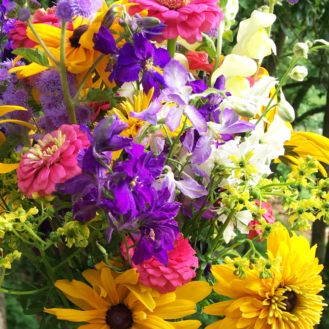 A colorful bouque from Whites Creek Farm Volunteer Gardener