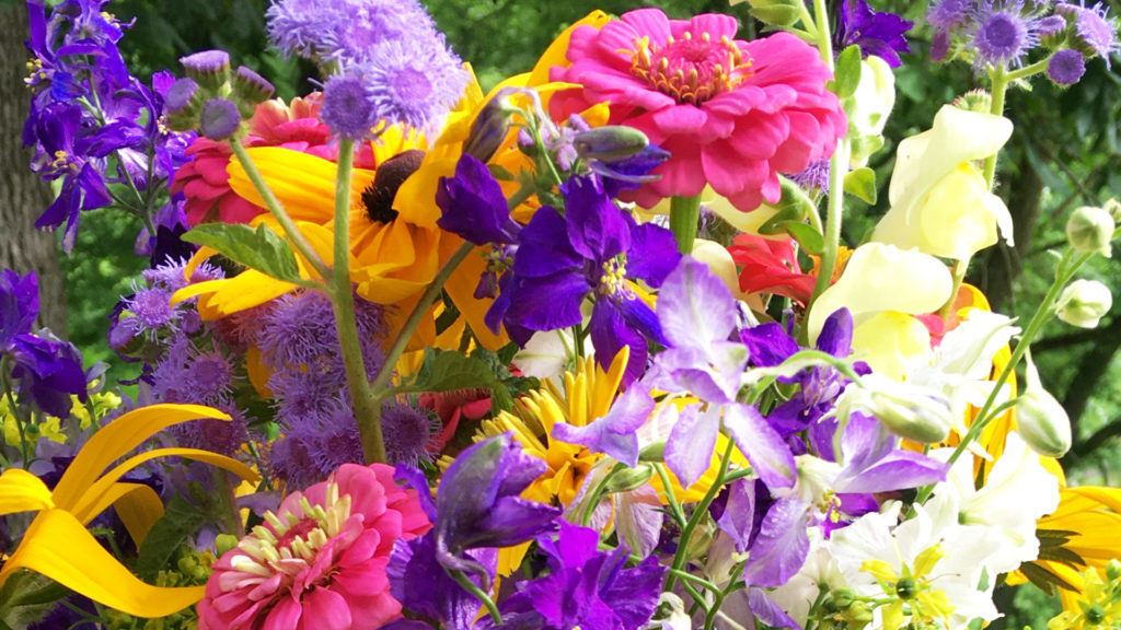 A colorful bouquet from Whites Creek Flower Farm
